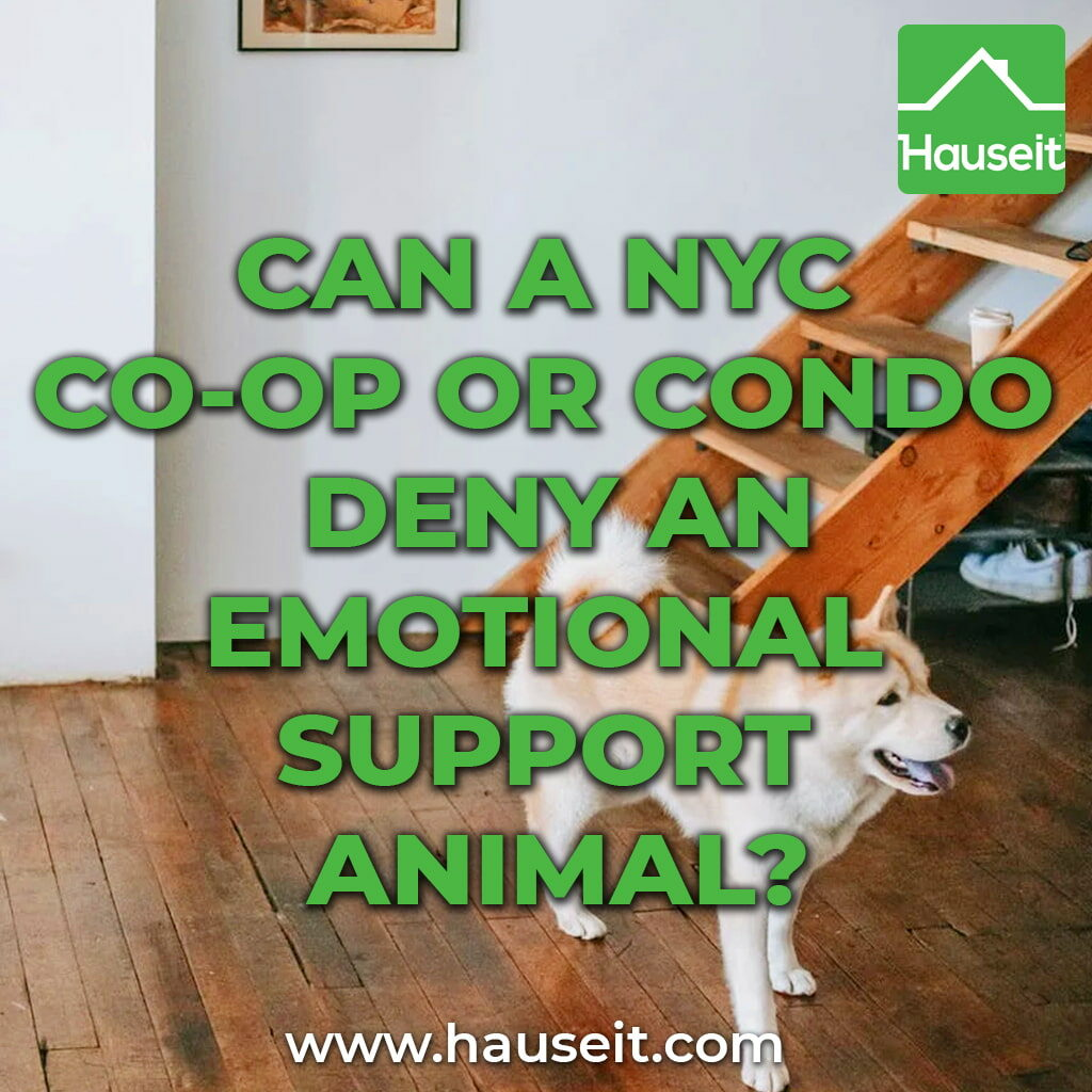 NYC co-ops and condos with a no-pet policy must still permit emotional support animals. Refusing to accommodate an emotional support animal is a fair housing violation.